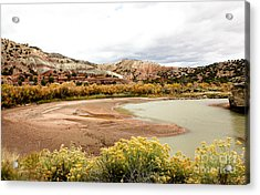 Acrylic Print featuring the photograph Chama River Swim Spot by Roselynne Broussard