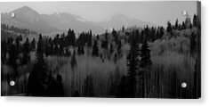 Acrylic Print featuring the photograph Chama Trees by Atom Crawford