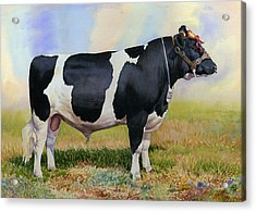 Champion Friesian Bull Acrylic Print by Anthony Forster