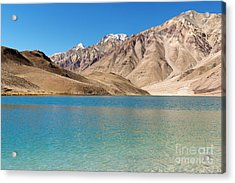 Chandratal Lake Acrylic Print