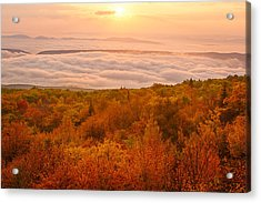 Acrylic Print featuring the photograph Changing Of Seasons by Bernard Chen
