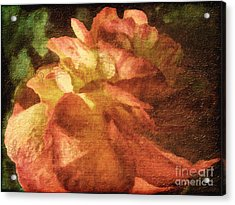 Acrylic Print featuring the digital art Chanson D'amour by Lianne Schneider
