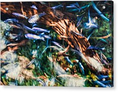 Acrylic Print featuring the photograph Chaotic Mess by Joshua Minso
