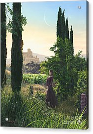 Chardonnay Wine Country Fantasy Acrylic Print by Stu Shepherd
