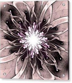 Charismatic Acrylic Print