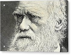 Charles Darwin Portrait Engraving Acrylic Print by Rolbos