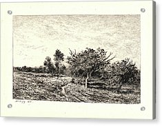 Charles François Daubigny French, 1817 - 1878. Apple Trees Acrylic Print by Litz Collection