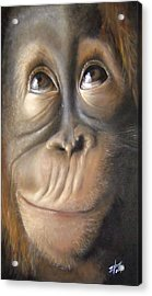 Charles The Monkey Acrylic Print by Michelle Iglesias