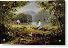 Charles Waterton Capturing A Cayman, 1825-26 Acrylic Print