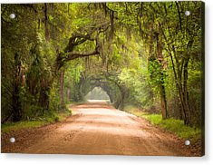 Charleston Sc Edisto Island Dirt Road - The Deep South Acrylic Print by Dave Allen