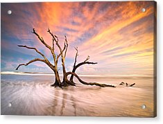 Charleston Sc Sunset Folly Beach Trees - The Calm Acrylic Print