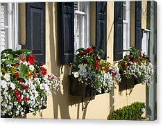 Charleston Sc Window Dressing Acrylic Print