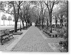 Charleston Waterfront Park Walkway - Black And White Acrylic Print