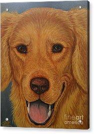 Charlie Golden Acrylic Print