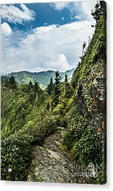 Acrylic Print featuring the photograph Charlies Bunion Trail by Debbie Green