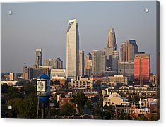Charlotte In The Late Afternoon Acrylic Print