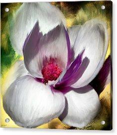 Charming Bloom Acrylic Print