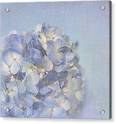 Charming Blue Acrylic Print