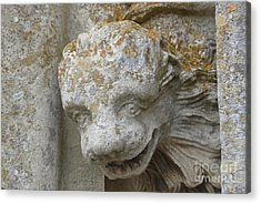 Acrylic Print featuring the photograph Chartres Cathedral Carved Head by Deborah Smolinske