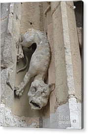 Acrylic Print featuring the photograph Chartres Cathedral Dog Gargoyle by Deborah Smolinske