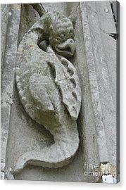 Acrylic Print featuring the photograph Chartres Cathedral Dragon by Deborah Smolinske