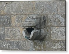 Acrylic Print featuring the photograph Chartres Cathedral Gargoyle Drain by Deborah Smolinske