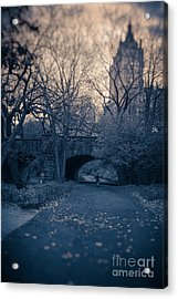 Chased Through Central Park Acrylic Print by Edward Fielding