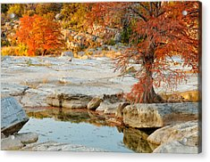 Chasing The Light At Pedernales Falls State Park Hill Country Acrylic Print by Silvio Ligutti