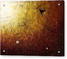 Chasing The Light Acrylic Print by Carmen Guedez