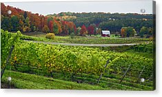 Chateau Chantal In Autumn 2014 Acrylic Print