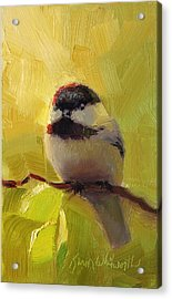 Chatty Chickadee - Cheeky Bird Acrylic Print