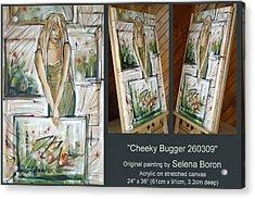 Cheeky Bugger 260309 Comp Acrylic Print by Selena Boron