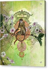 Cheeky Monkey Acrylic Print by Aimee Stewart