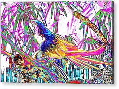 Cheerful Parrot. Colorful Art Collection. Promotion - August 2015 Acrylic Print