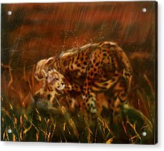 Cheetah Family After The Rains Acrylic Print by Sean Connolly