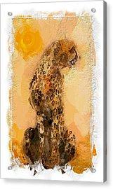 Cheetah Acrylic Print by Steve K