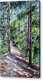 Cheraw Trail Acrylic Print by Mary McCullah