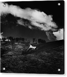 Cherhill White Horse Wiltshire Acrylic Print by Mark Preston