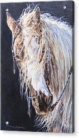 Cherokee Rose Gypsy Horse Acrylic Print