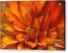 Cherokee Sunset Acrylic Print