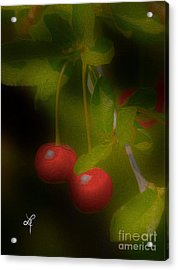 Cherries Acrylic Print by Leo Symon