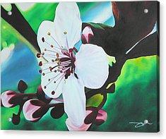 Acrylic Print featuring the painting Cherry Blosom by Joshua Morton