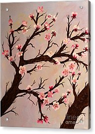 Cherry Blossom 1 Acrylic Print by Barbara Griffin