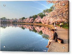 Acrylic Print featuring the photograph Cherry Blossom Love by Michael Donahue