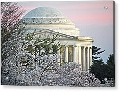 Cherry Blossom Sunset Acrylic Print