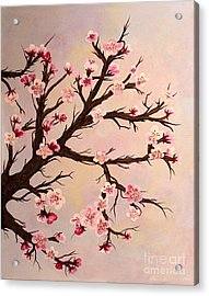 Cherry Blossoms 2 Acrylic Print by Barbara Griffin