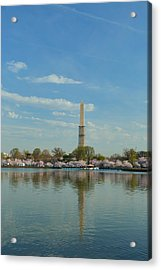 Cherry Blossoms 2013 - 045 Acrylic Print by Metro DC Photography