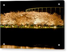 Cherry Blossoms Across The Hocking Acrylic Print by Shirley Tinkham