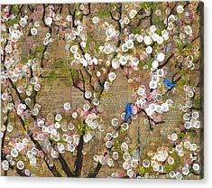 Cherry Blossoms And Blue Birds Acrylic Print by Blenda Studio