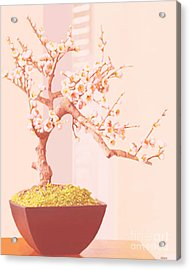 Cherry Bonsai Tree Acrylic Print